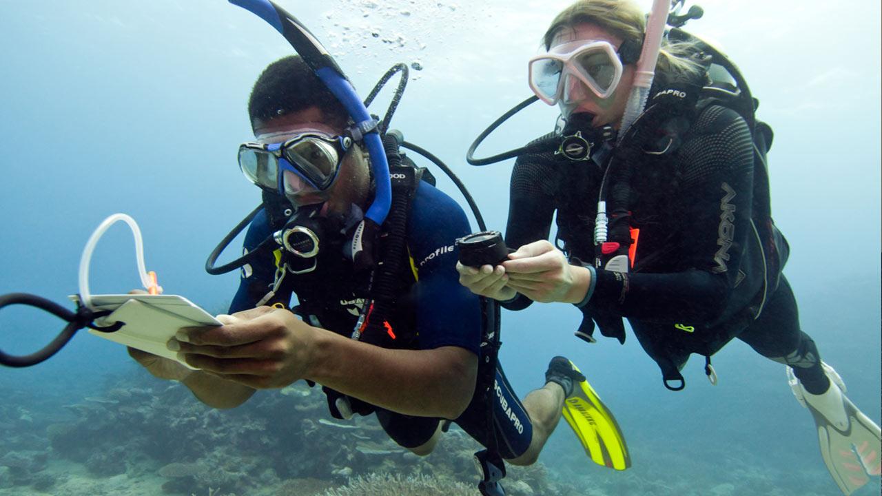 Kurs PADI Rescue Diver 2